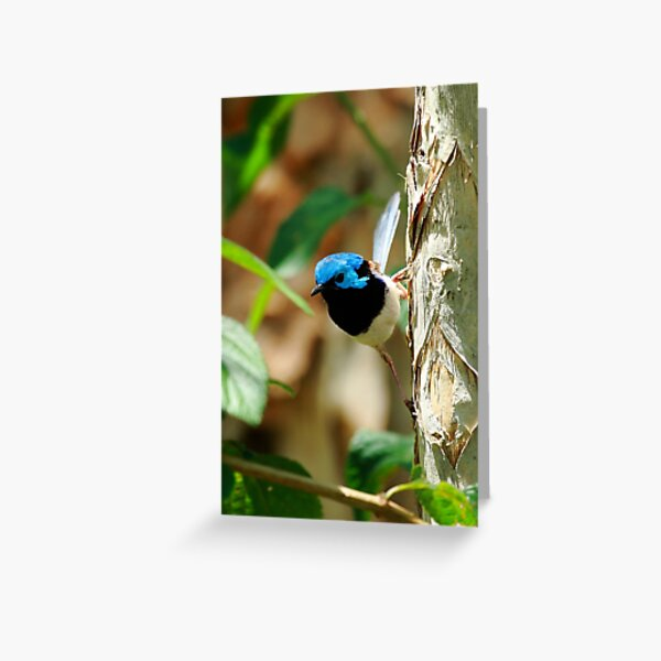 The Tree Fairy Greeting Card
