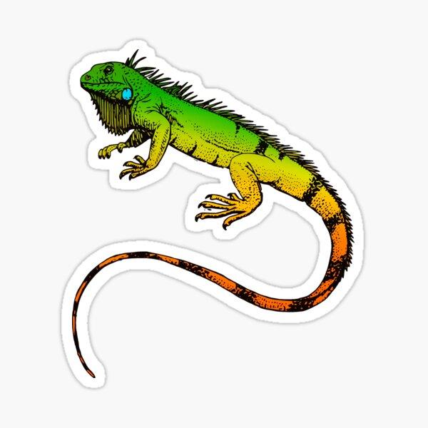 Green Iguana Lizard Reptile Exotic Pets Animal  Sticker
