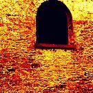 Arched Window by Fara