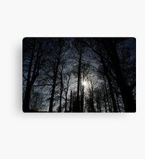Treelight Canvas Print