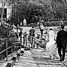 nice day for a white wedding! by Fiona Gardner