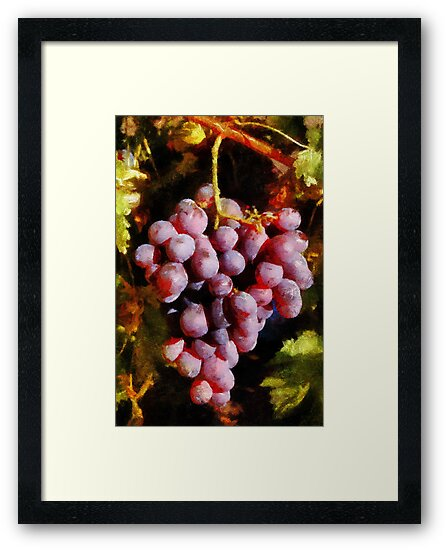 Grapes by Eve Parry
