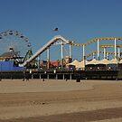 Ferris Wheel At Santa Monica Pier by Merilyn