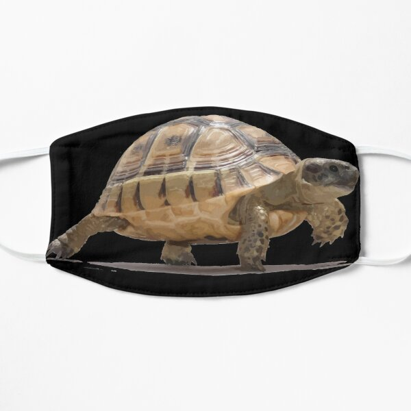 Marching Baby Tortoise Cartoon Vector Isolated Mask