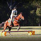 Barrel Racer to Pony club by SylanPhotos