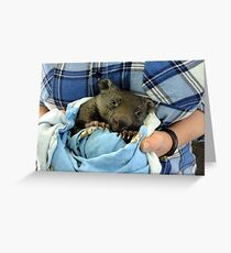 Dave from Wildlife Rescue Care and Rehabilitation Greeting Card