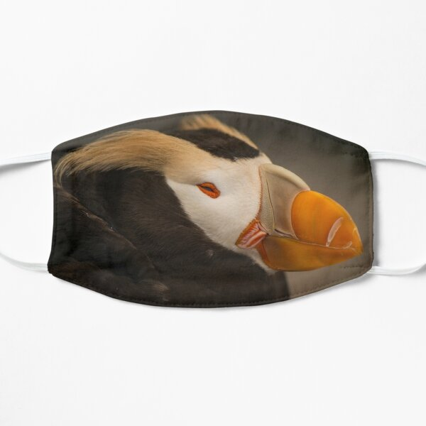 Tufted Puffin Mask