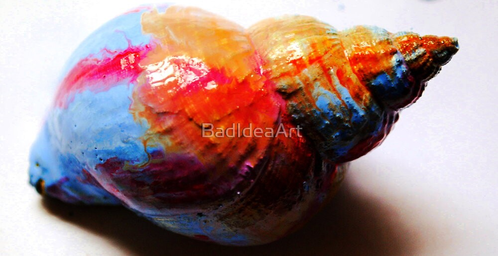 Painted Shell by BadIdeaArt