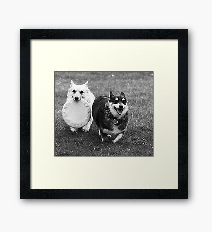 Stitch and Kabo ~ Framed Print