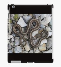 Speaks with forked tongue. iPad Case/Skin