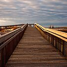 Early Morning Beach Walk by Debra Fedchin
