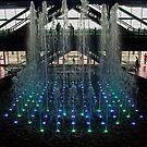 The Water Show by Debra Fedchin