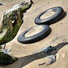 Hudson River Discards 2012 by joan warburton