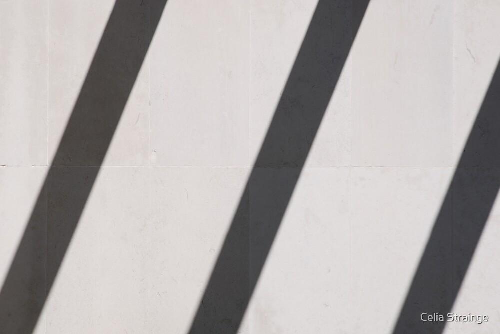 Worthing Shadows by Celia Strainge