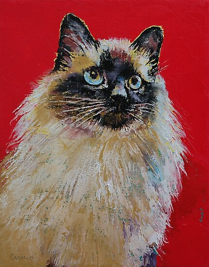 Siamese Cat Portrait by Michael Creese