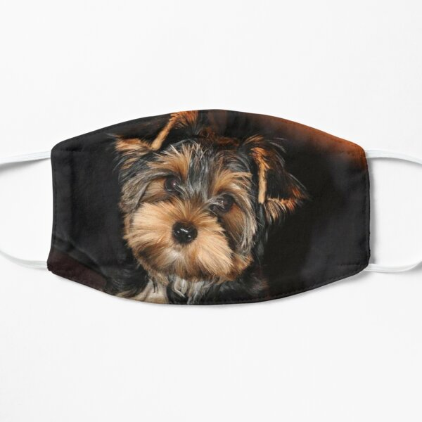 Cute Yorkshire Terrier Dog Mask