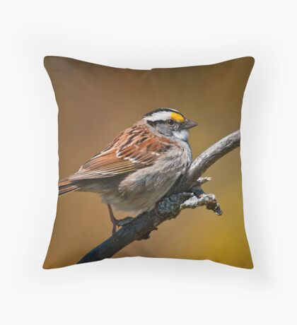 White Throated Sparrow Throw Pillow