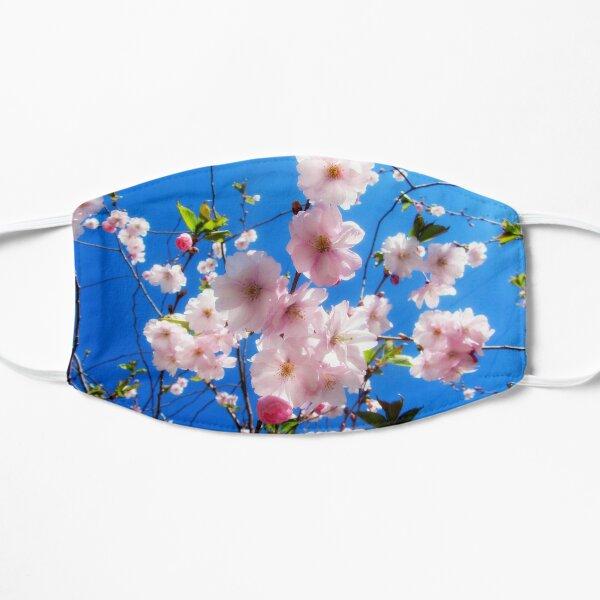 Sakura. Fresh spring flowers background. Flat Mask