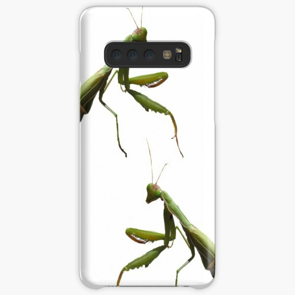 Are you looking at me? Samsung Galaxy Snap Case