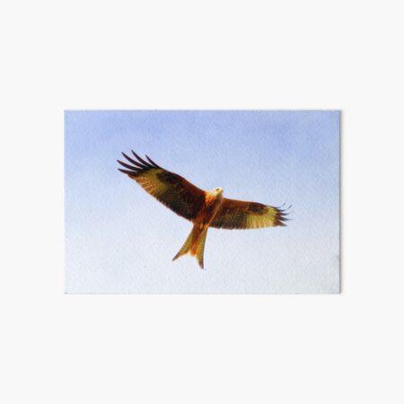 Red Kite in flight Art Board Print