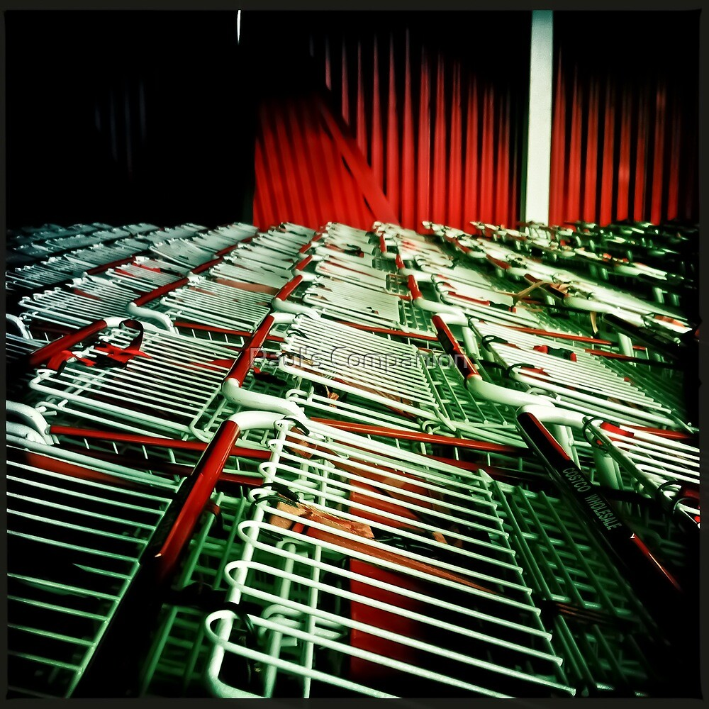 303 of 365 Hipstamatic Project by Raul's Companion