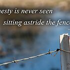 On the Fence by Jaysen Edgin