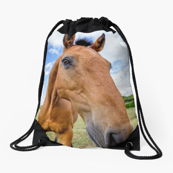Horse of a Dun Colour Drawstring Bag