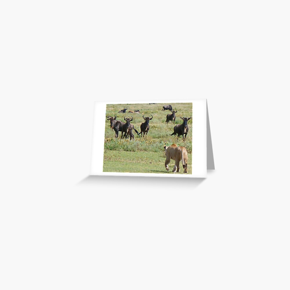Wildebeast for lunch Greeting Card