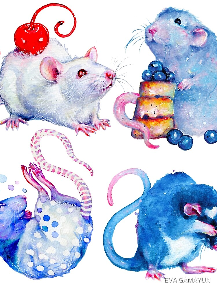 Sweet Rats by tanyashatseva