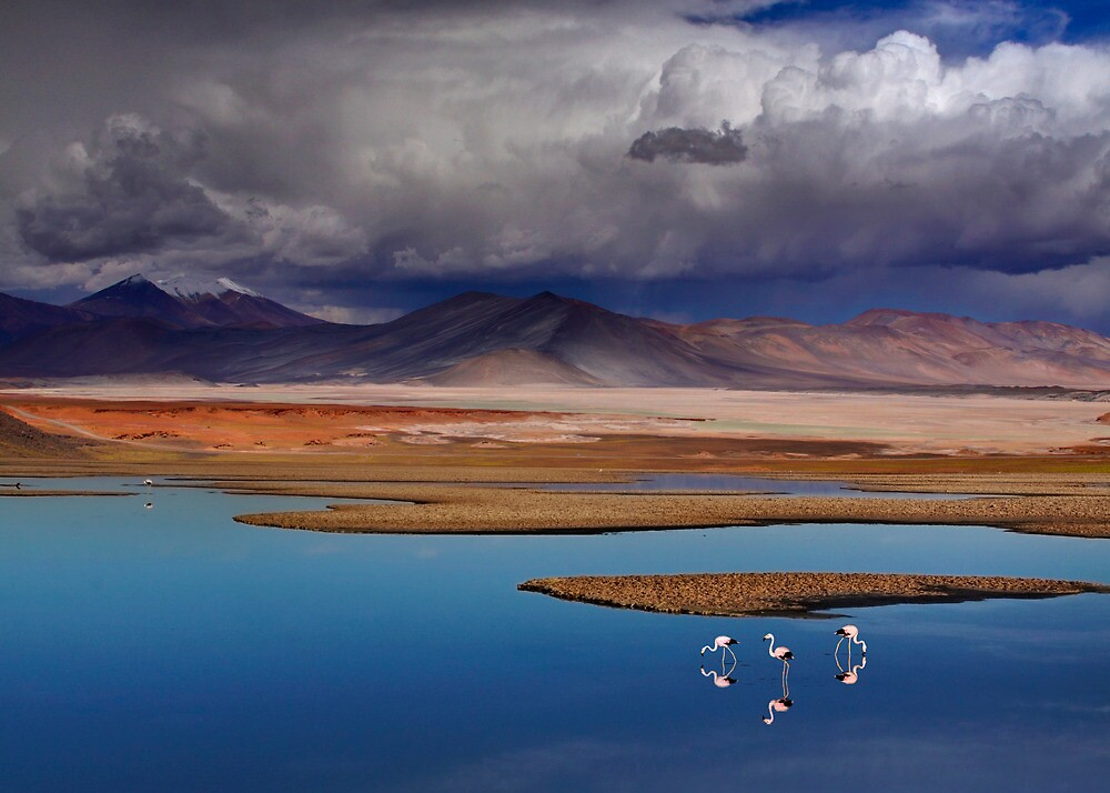 ATACAMA DESERT - CHILE by Michael Sheridan