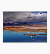 ATACAMA DESERT - CHILE Photographic Print