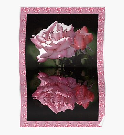 Passionately Pink Rose Duo Poster