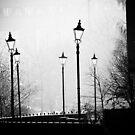 Fog light by David Tovey