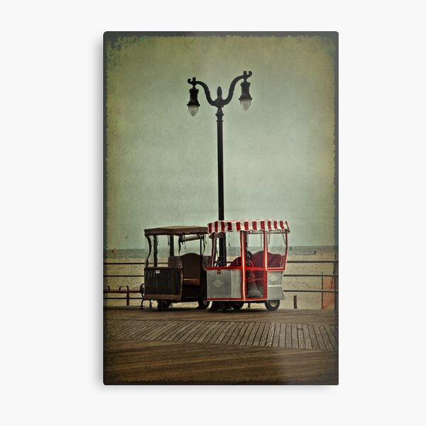 Wanna Ride? Metal Print