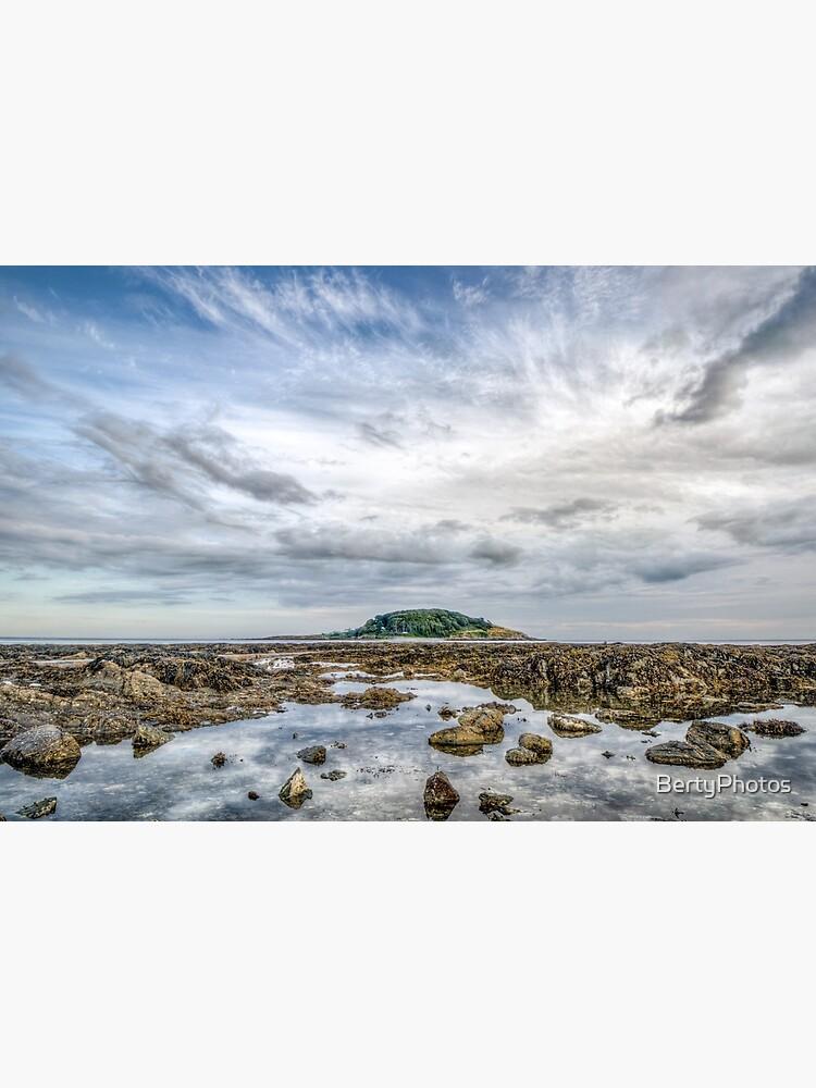 St George's Island, Looe - 28/07/19 by BertyPhotos