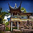 House of Zen by Yelena Rozov