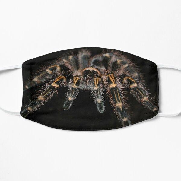 AWESOME TARANTULA MERCH WITH BLACK BACKGROUND Mask