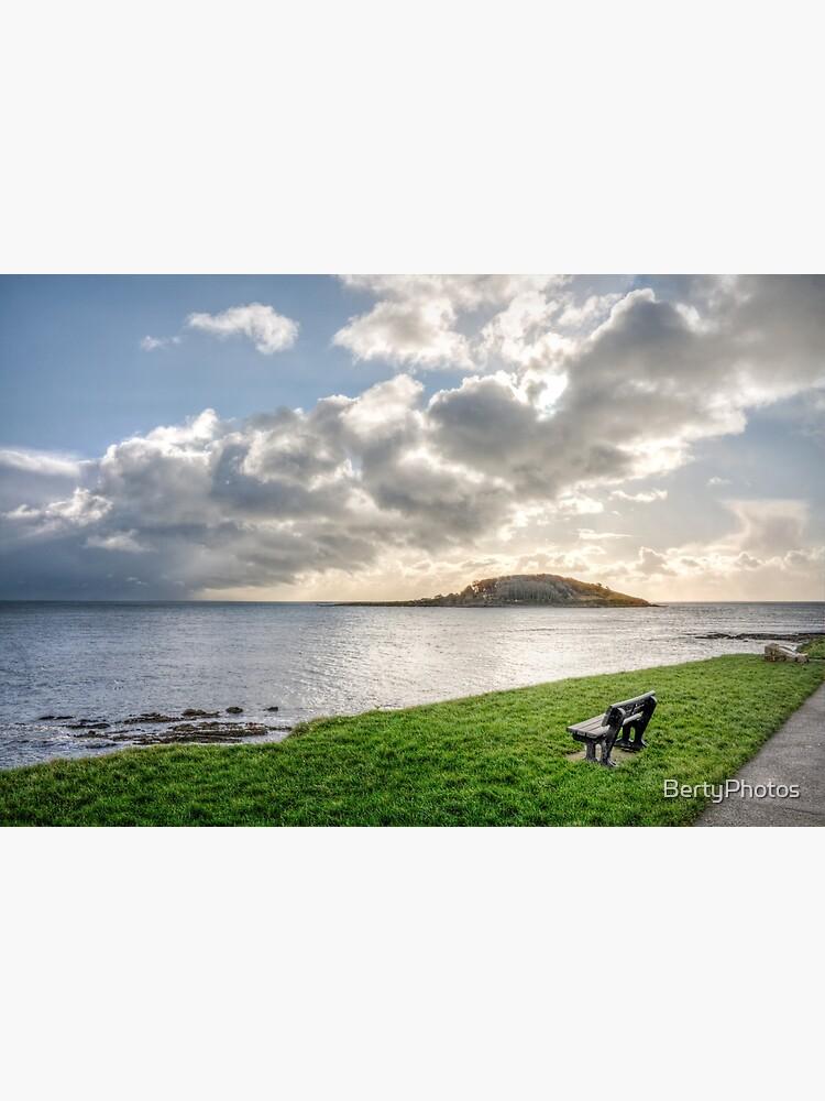St George's Island, Looe - Winter by BertyPhotos