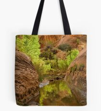 Willow Gulch Tote Bag