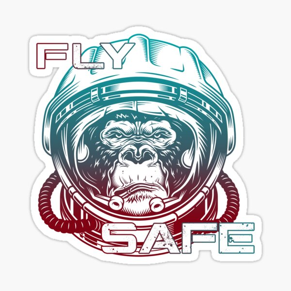 Fly Safe - Stay Healthy Sticker