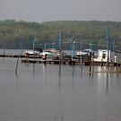 Shenango Lake Marina  by Sandra Lee Woods