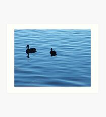 Peace and Serenity Art Print