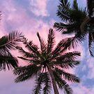 Fiji Nights by tracyleephoto