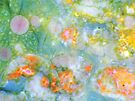 Rainbow Bouquet 1 by Stephanie Bateman-Graham
