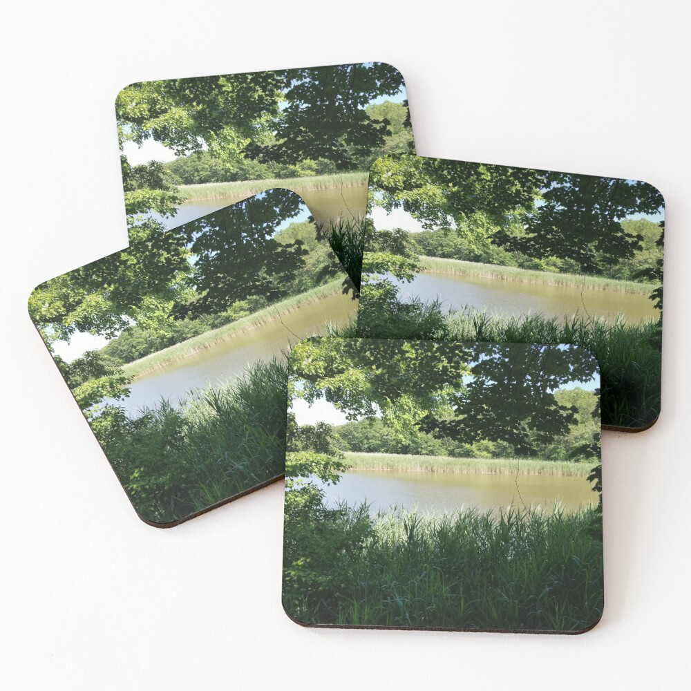 River Through the Trees Coasters (Set of 4)