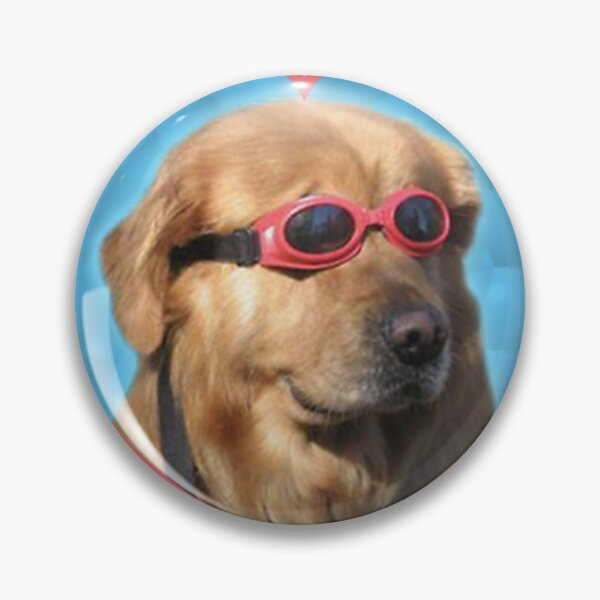 Doggo Stickers: Swimmer Dog Pin