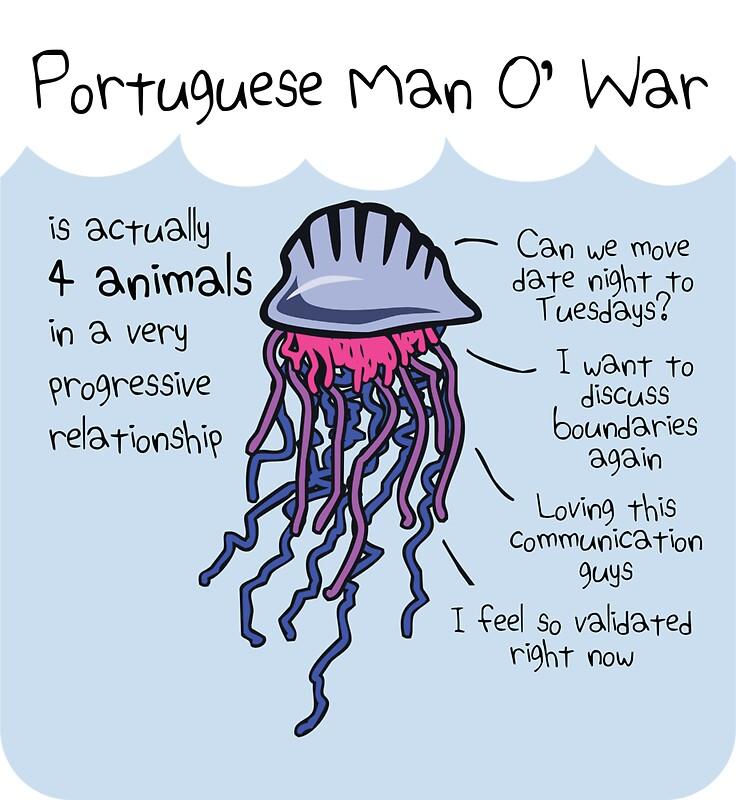 portugiesische Männer in Beziehungen