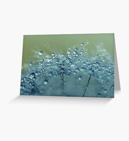 Dandelion Drops in Blue Greeting Card
