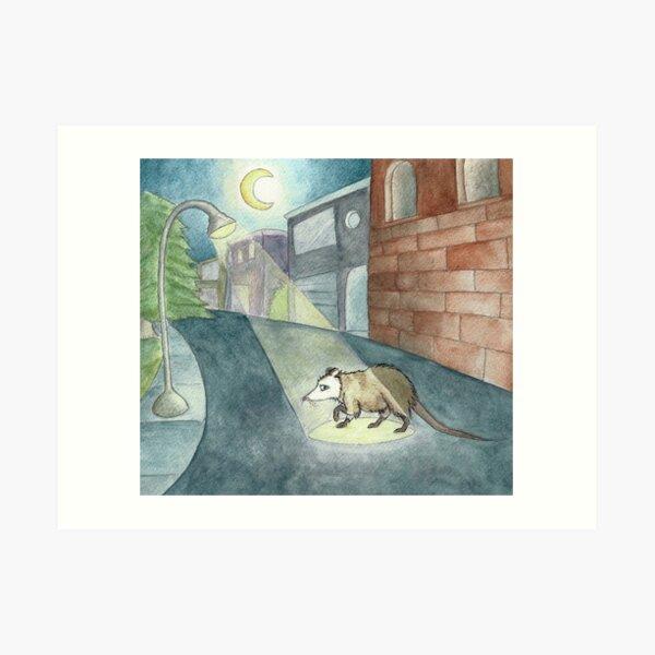Nocturne Possum  Art Print
