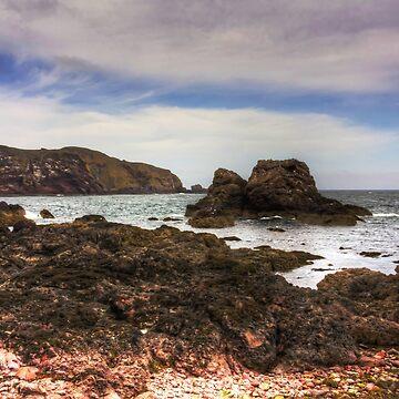 Rocks at St Abbs by tomg
